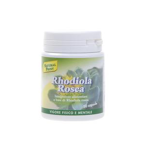 Rhodiola Rosea Integratore Naturale dal Potere Tonico-Adattogeno